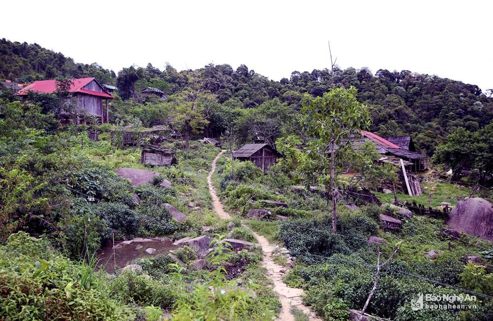 bna__ban_huoi_co_xa_nhon_mai_anh_ho_phuong_17407086_272018.jpg