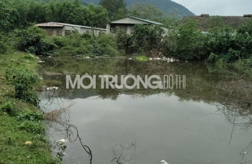 nghe-an-buc-tu-moi-truong-nghiem-trong-tu-trai-lon-khong-phep-2-1615640619.jpg